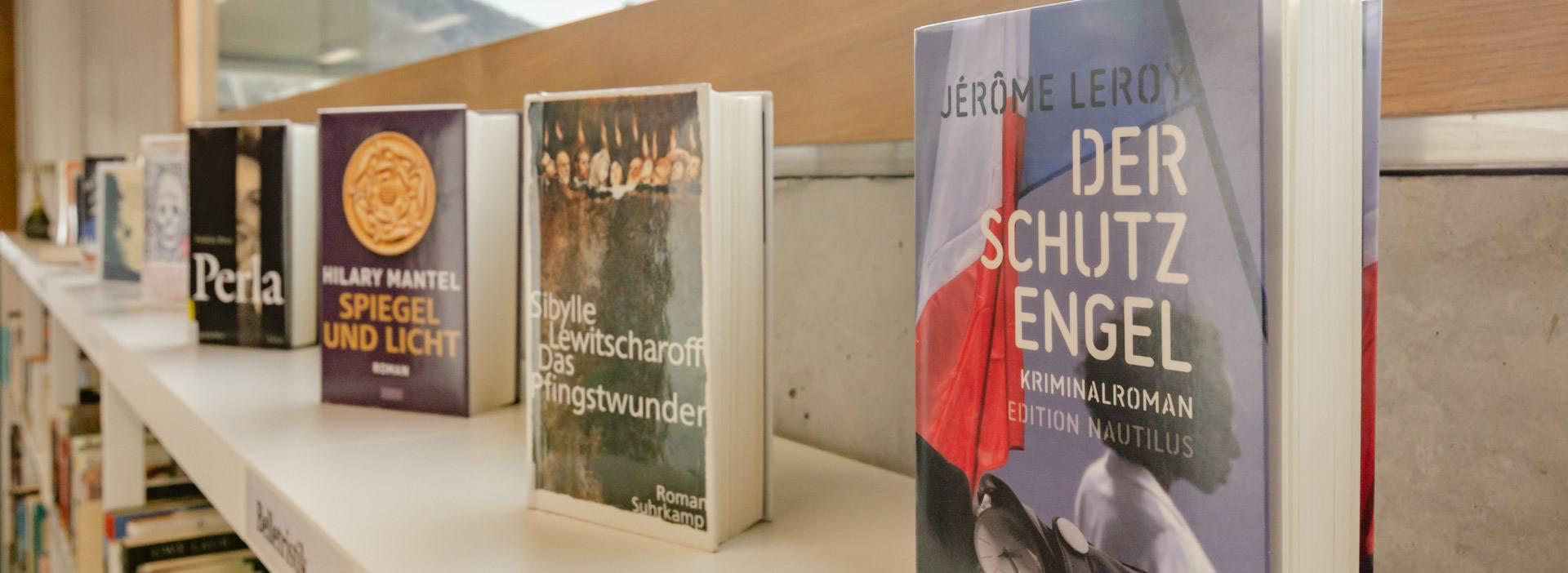 Bibliothek Sinich